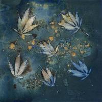 Chris-Owens-UK-Wales-Japanese-Maple-Leaves