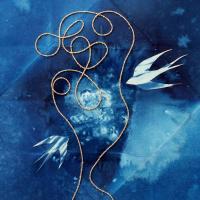 Erica-Forsman-Sweden-Untangle