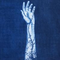 Hayley-Earnest-USA-Regrowth