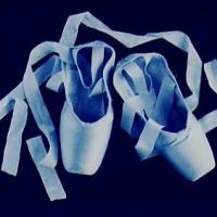 Cyanotype Hayles toe shoes