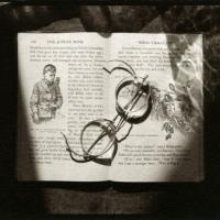 Kallitype toned w platinum Glasses on jungle book
