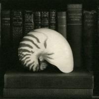 Kallitype toned w platinum Nautilus and books