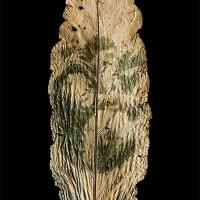 Chlorophyll-print-Bolivia-Ally-Gorka-Anthurium-leaf
