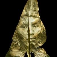 Chlorophyll-print-SHIWIAR-warrior-ECUADOR-Calla-Lily-leaf