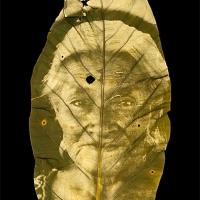 Chlorophyll-print-Tzeltal-Old-Women-Chiapas-Mexico-ANTHURIUM-LEAF