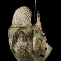 Chlorophyll-print-Women-and-boy-Mexico