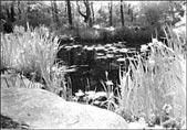 Bright Sunlight #25 Filter. Kodak HIE, 35mm film