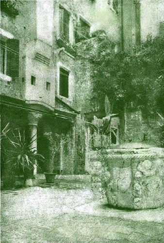 Resinotype, Alberto Novo An corte Petriana