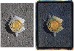 Nacho Cheese 2008; left side, original, right side tricolor gum bichromate.