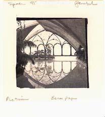 Burgos pool, Spain, 1989, platinum print, Cranes ecru paper. 12 drops, #7; 6 drops platinum