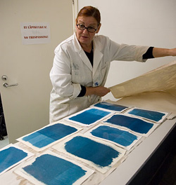 Pirkko Holm, printmaker and research worker of Project Vedos, examining the cyanotype paper samples.