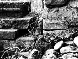This is the manipulated B&W version of 'Old Slabs, New Steps'.
