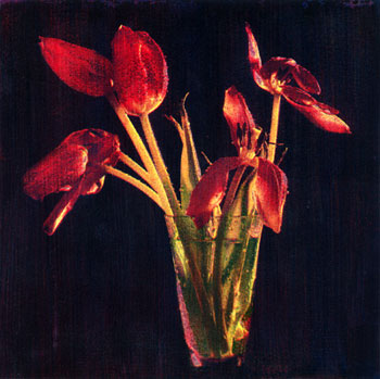 Six Tulips, 2004, Variant 1 ©.