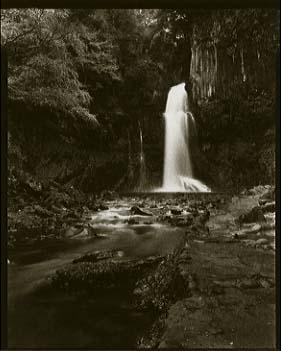 Vandyke Path to Odaru, Kawazu, Izu, 12/26/89