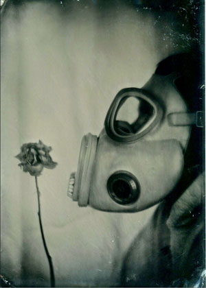 "By: Shane Balkowitsch Title: ""The Last Flower"" 5"" x 7"" Ambrotype on Clear Glass Country: United States"