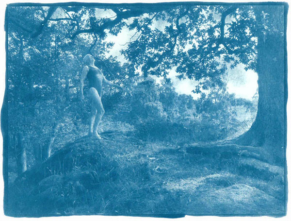 Useless papers for cyanotype process