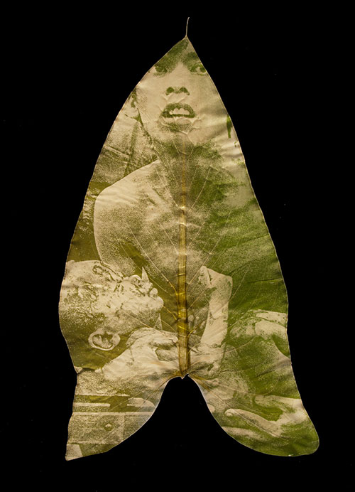 Binh Danh - Holding #2 From the Immortality: The Remnants of the Vietnam and American War series Chlorophyll print and resin 15 5/8 x 13 1/2 inches 2009
