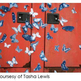 Butterflies in Blue:  A Worldwide Adventure