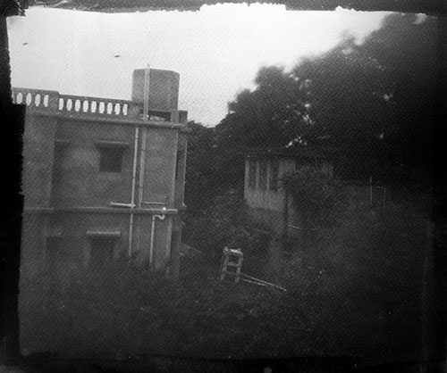 Cyanotype taken in camera