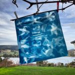 World Cyanotype Day in Australia – collaboration across continents
