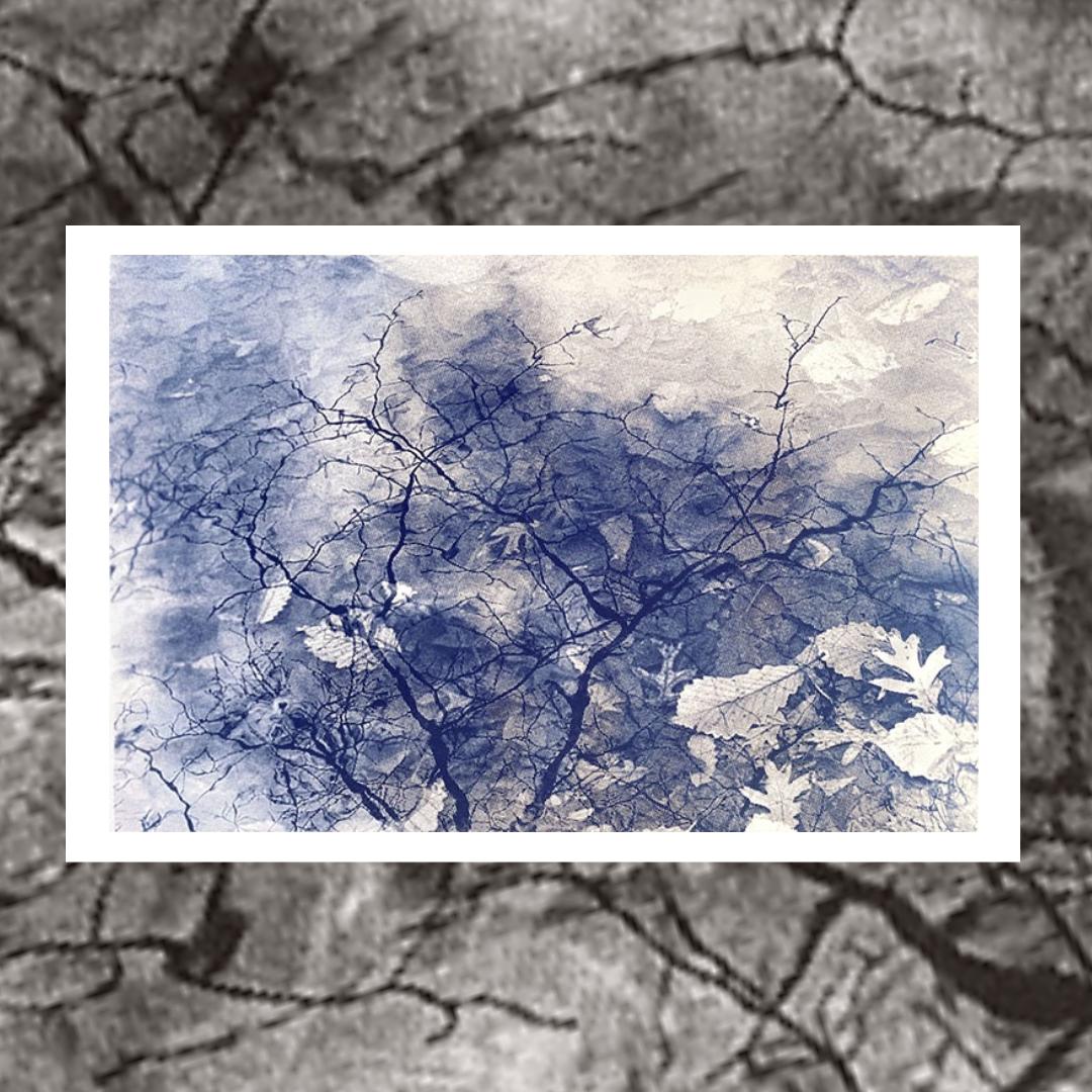 Cyanotype by R. Keith Farrar