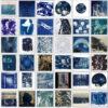 World Cyanotype Day 2020
