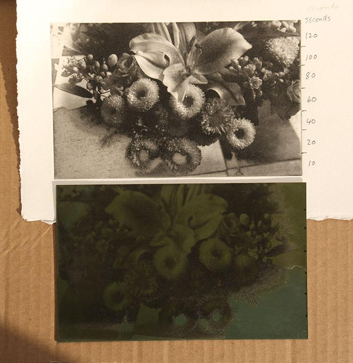 Photo intaglio test plate and print